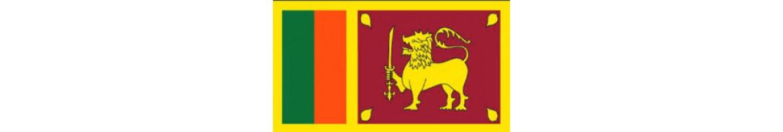 Srilankan Food