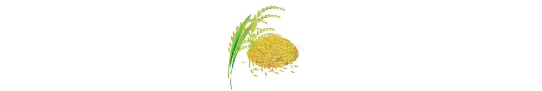 Rice & Produce