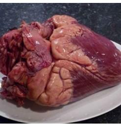 Beef Heart / Gurda (Japan)