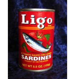 Sardines Halal Fish (Ligo)