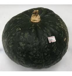 Pumpkin (Fresh)