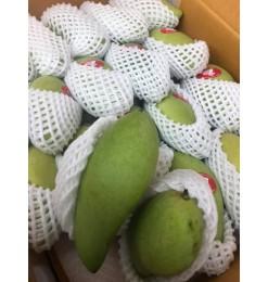 Green Mango (Fresh) 500gm