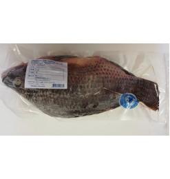 Telapia Fish (Ikan Nila) 700gm
